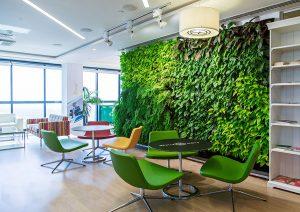 зеленая стена в офис