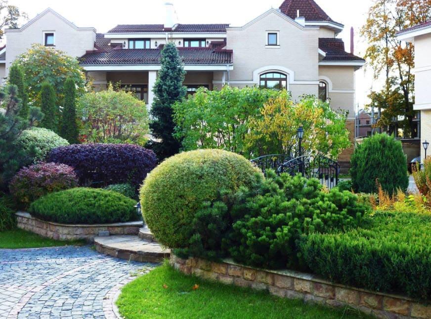 Озеленение частного дома: основные принципы и решения
